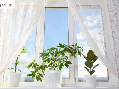 6 6 maneiras de limpar a energia negativa nos ambientes dentro de casa