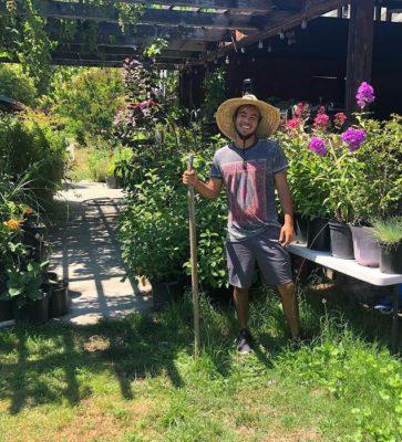 2 4 Filho de Kadu Moliterno publica foto trabalhando em plantacao de maconha na California