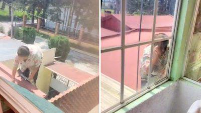 4 capa Cameras captaram idosa espiando vizinhos pela janela usando uma escada