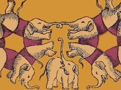 6 capa Diga quantos elefantes existem na imagem e te revelaremos a sua porcentagem de ganancia