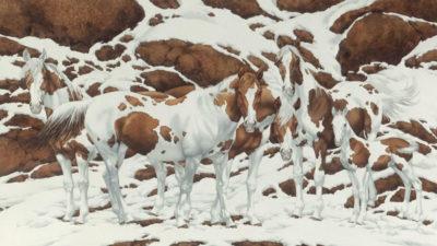 capaa quantidade de cavalos que voce enxergou na imagem revela o quao evoluido e o seu QI