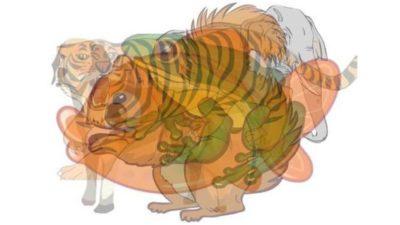 existem 7 animais nessa imagem mas so aqueles com visao perfeita sao capazes de identifica los